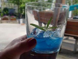 Der Gin mit dem Wow-Effekt!